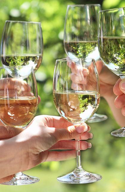 Rougeon Vins