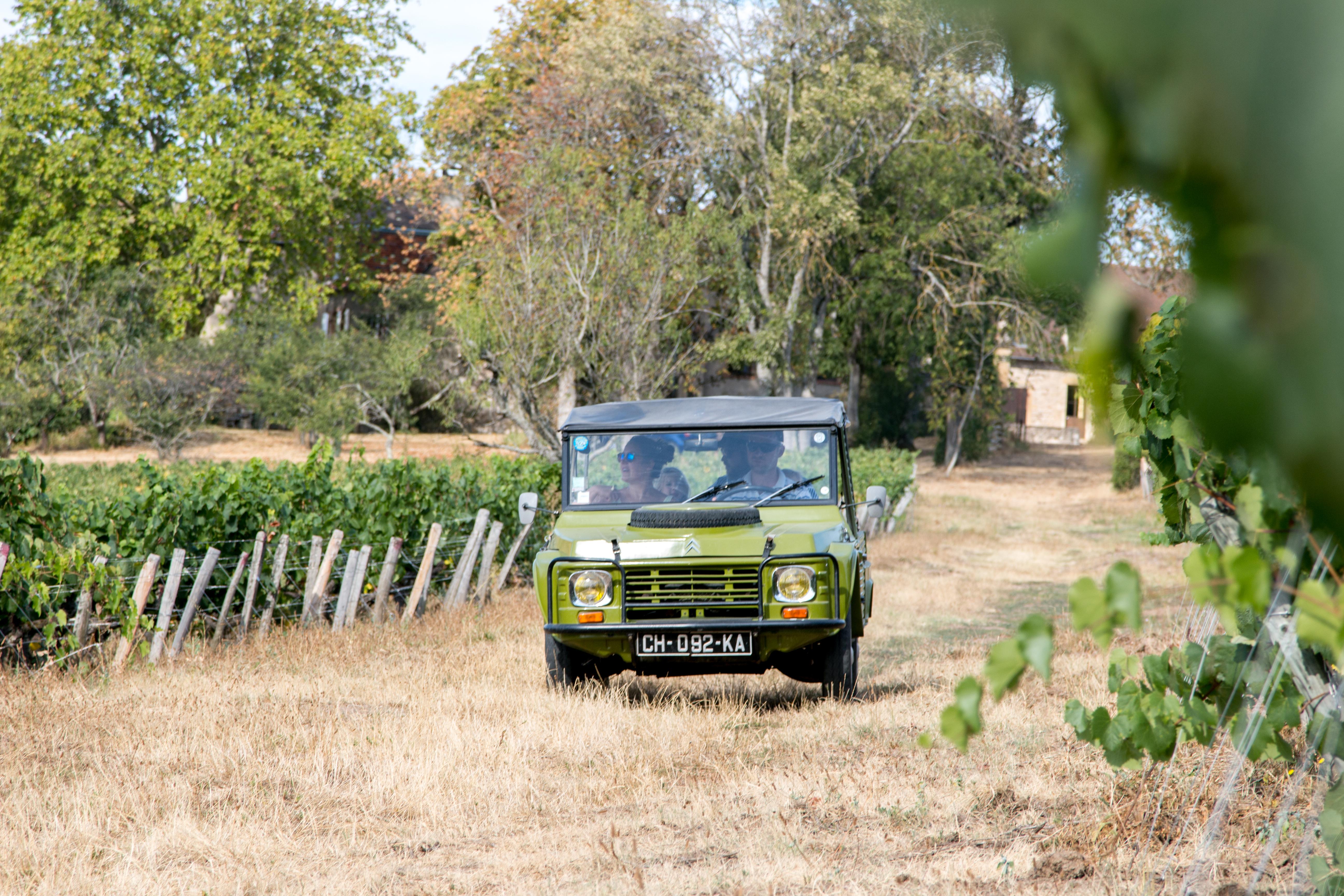 Visite du vignoble en vieille voiture